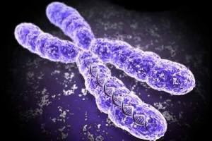 مشاوره ژنتیک را جدی بگیریم