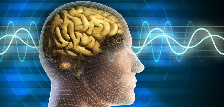 جوانان ایرانی ۷ برابر بیشتر سکته مغزی می کنند