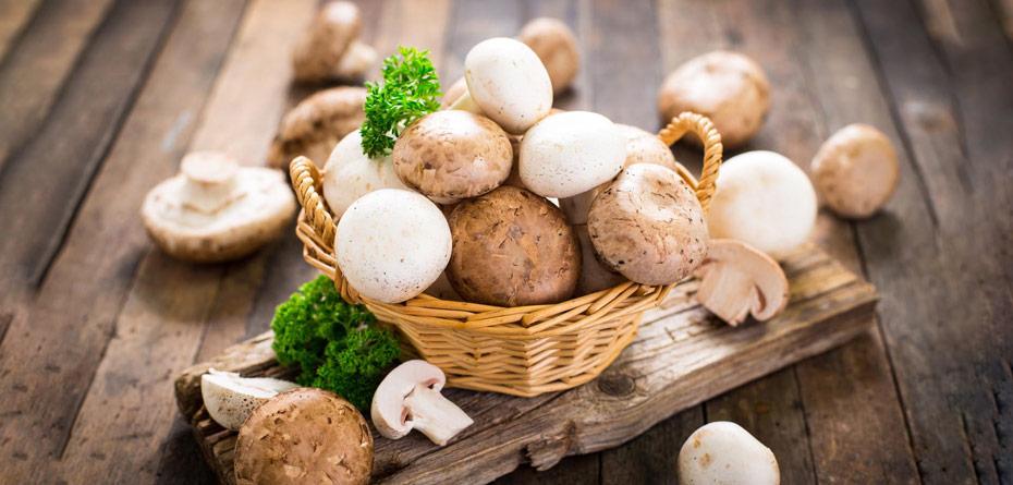مصرف قارچ در بارداری، خام بخوریم یا پخته؟