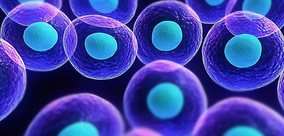 سلولهای بنیادی جان نوجوان 17 ساله را نجات داد