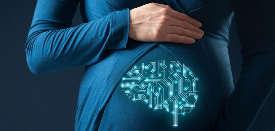 برای تقویت مغز جنین چه بخوریم؟